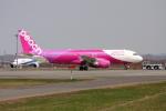 ATOMさんが、新千歳空港で撮影したピーチ A320-214の航空フォト(写真)