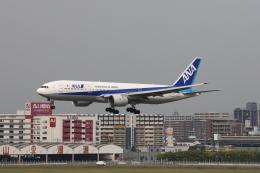 はまちさんが、福岡空港で撮影した全日空 777-281の航空フォト(飛行機 写真・画像)