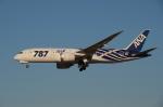 tassさんが、成田国際空港で撮影した全日空 787-8 Dreamlinerの航空フォト(飛行機 写真・画像)