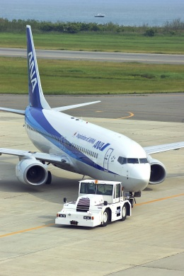 BELL602さんが、新潟空港で撮影した全日空 737-881の航空フォト(飛行機 写真・画像)