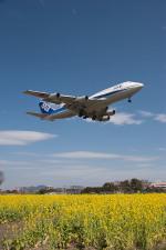 さっしんさんが、福岡空港で撮影した全日空 747-481(D)の航空フォト(写真)