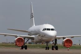 肉食獣さんが、羽田空港で撮影したジェット・アビエーション・ビジネス・ジェット A318-112 CJ Eliteの航空フォト(写真)