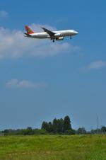 パンダさんが、成田国際空港で撮影したトランスアジア航空 A320-232の航空フォト(飛行機 写真・画像)