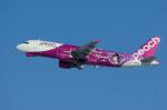Severemanさんが、新千歳空港で撮影したピーチ A320-214の航空フォト(写真)
