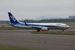 ATOMさんが、新千歳空港で撮影した全日空 737-881の航空フォト(写真)