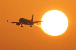 bakabon-icさんが、松山空港で撮影したジェットスター・ジャパン A320-232の航空フォト(写真)
