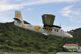 nakanozeroさんが、グスタフ3世飛行場で撮影したエア・アンティル・エクスプレス DHC-6 Twin Otterの航空フォト(飛行機 写真・画像)