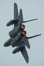 rjnsphotoclub-No.07さんが、静浜飛行場で撮影した航空自衛隊 F-15J Eagleの航空フォト(写真)