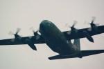 rjnsphotoclub-No.07さんが、静浜飛行場で撮影した航空自衛隊 C-130H Herculesの航空フォト(写真)