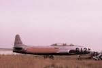 rjnsphotoclub-No.07さんが、静浜飛行場で撮影した航空自衛隊 T-33Aの航空フォト(写真)