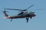 NOTE00さんが、大湊飛行場で撮影した海上自衛隊 UH-60Jの航空フォト(写真)