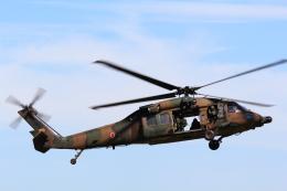 たまさんが、木更津飛行場で撮影した陸上自衛隊 UH-60JAの航空フォト(写真)