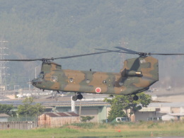 masayasuさんが、八尾空港で撮影した陸上自衛隊 CH-47Jの航空フォト(飛行機 写真・画像)
