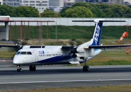 頭文字Sさんが、伊丹空港で撮影した全日空 DHC-8-402Q Dash 8の航空フォト(飛行機 写真・画像)