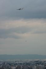 森太郎さんが、伊丹空港で撮影した全日空 DHC-8-402Q Dash 8の航空フォト(写真)