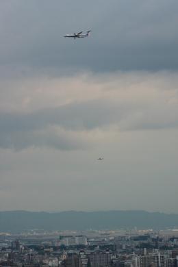 森太郎さんが、伊丹空港で撮影した全日空 DHC-8-402Q Dash 8の航空フォト(飛行機 写真・画像)