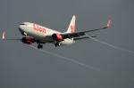 RUSSIANSKIさんが、シンガポール・チャンギ国際空港で撮影したライオン・エア 737-8GPの航空フォト(飛行機 写真・画像)