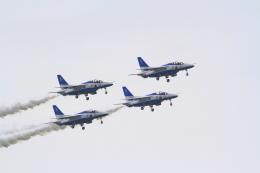 Dainanさんが、米子空港で撮影した航空自衛隊 T-4の航空フォト(写真)