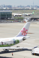 SKYLINEさんが、羽田空港で撮影したチャイナエアライン A330-302の航空フォト(写真)