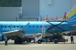 rjnsphotoclub-No.07さんが、静岡空港で撮影したフジドリームエアラインズ ERJ-170-100 (ERJ-170STD)の航空フォト(飛行機 写真・画像)