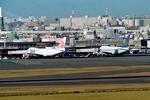 SKYLINEさんが、羽田空港で撮影したチャイナエアラインの航空フォト(飛行機 写真・画像)