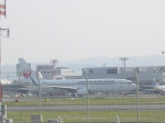わたくんさんが、福岡空港で撮影した日本航空 737-846の航空フォト(写真)