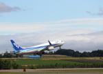 tuckerさんが、女満別空港で撮影した全日空 737-881の航空フォト(飛行機 写真・画像)