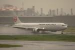 しんさんが、羽田空港で撮影した日本航空 767-346の航空フォト(写真)