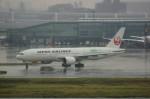 しんさんが、羽田空港で撮影した日本航空 777-246/ERの航空フォト(写真)