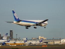 toyokoさんが、成田国際空港で撮影した全日空 767-381/ERの航空フォト(飛行機 写真・画像)