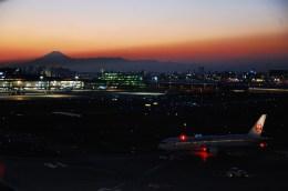 リョウさんが、羽田空港で撮影した日本航空 767-346/ERの航空フォト(飛行機 写真・画像)