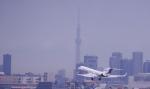 TakahitoIkawaさんが、羽田空港で撮影した不明の航空フォト(写真)