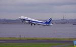 TakahitoIkawaさんが、羽田空港で撮影した全日空 A320-211の航空フォト(写真)