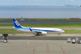 こずぃろうさんが、羽田空港で撮影した全日空 737-881の航空フォト(飛行機 写真・画像)