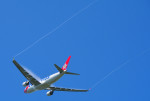 さくらの城南山。さんが、成田国際空港で撮影したエーデルワイス航空 A330-223の航空フォト(飛行機 写真・画像)