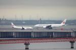SKYLINEさんが、羽田空港で撮影した日本航空 777-246/ERの航空フォト(飛行機 写真・画像)