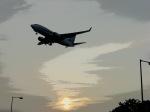わたくんさんが、福岡空港で撮影した全日空 737-781の航空フォト(写真)