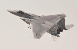 こびとさんさんが、茨城空港で撮影した航空自衛隊 F-15J Eagleの航空フォト(写真)