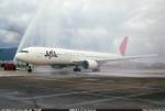 Peter Hoさんが、台北松山空港で撮影した日本航空 767-346/ERの航空フォト(写真)