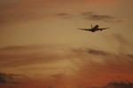 TakahitoIkawaさんが、松山空港で撮影した日本航空 767-346の航空フォト(写真)