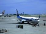 メヘンサルの猿さんが、那覇空港で撮影した全日空 737-881の航空フォト(写真)