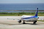 アイスコーヒーさんが、那覇空港で撮影した全日空 A320-211の航空フォト(写真)