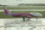 アイスコーヒーさんが、那覇空港で撮影したピーチ A320-214の航空フォト(飛行機 写真・画像)