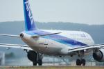 パンダさんが、仙台空港で撮影した全日空 A320-211の航空フォト(飛行機 写真・画像)