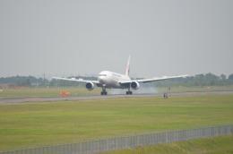 お~で~さんが、新千歳空港で撮影した日本航空 777-246の航空フォト(飛行機 写真・画像)