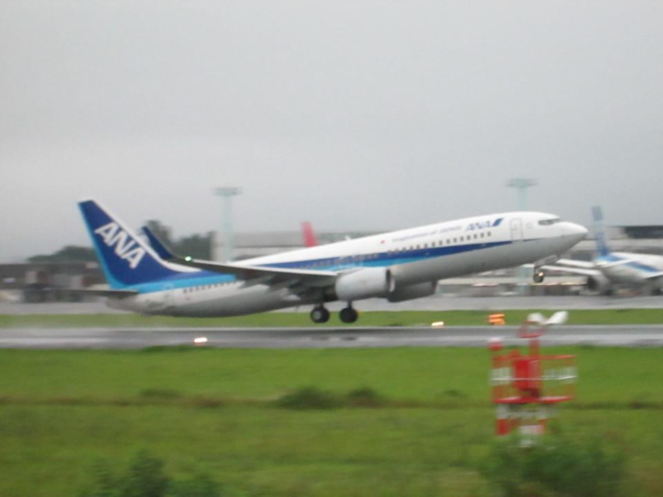 Yuseiさんの全日空 Boeing 737-800 (JA56AN) 航空フォト