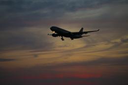 mameshibaさんが、成田国際空港で撮影したジェットスター A330-202の航空フォト(飛行機 写真・画像)
