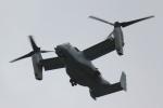 横田基地 - Yokota Airbase [OKO/RJTY]で撮影されたアメリカ海兵隊 - United States Marine Corpsの航空機写真