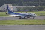 ANA744Foreverさんが、成田国際空港で撮影した全日空 737-781の航空フォト(写真)