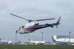 SKYLINEさんが、成田国際空港で撮影したノエビア AS350B3 Ecureuilの航空フォト(写真)